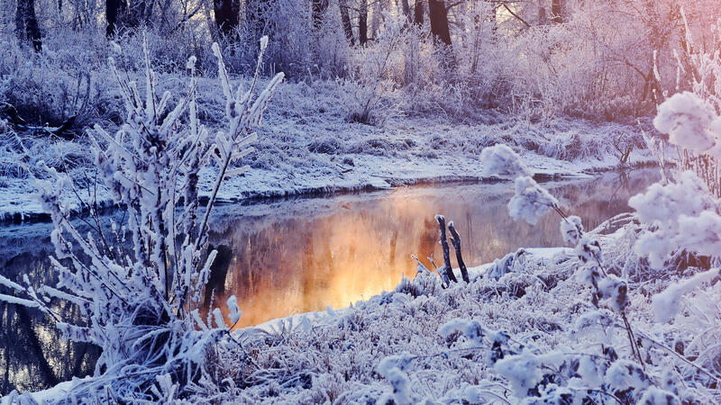 The best winter wallpaper on your desktop Природа, The best winter wallpaper on your desktop, Desktop Wallpapers, Winter, Forests, Sunset, Sunrise id621132114