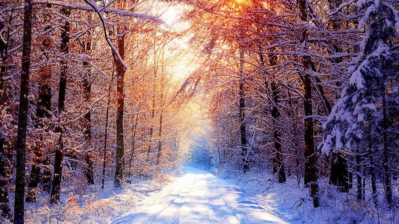 Кращі фотошпалери зими на робочий стіл Природа, Кращі фотошпалери зими на робочий стіл, Шпалери для робочого столу, Зима, Ліси, Захід Сонця, Схід Сонця id408094534