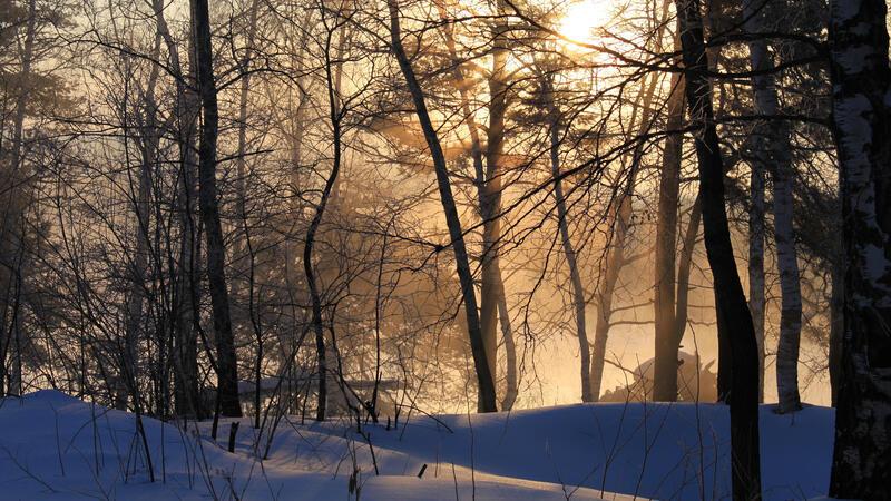 Кращі фотошпалери зими на робочий стіл / частина 2 Природа, Кращі фотошпалери зими на робочий стіл, Шпалери для робочого столу, Зима, Ліси, Захід Сонця, Схід Сонця id837447752