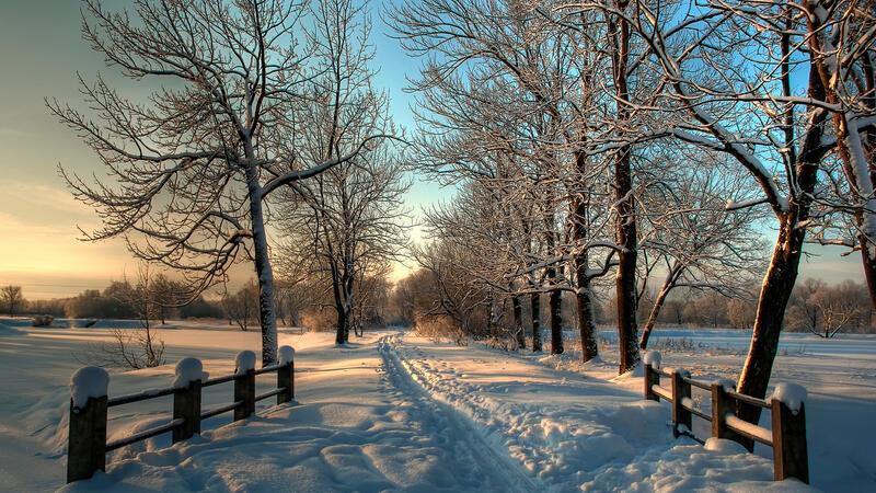 Лучшие фотообои зимы на рабочий стол Природа, Лучшие фотообои зимы на рабочий стол, Обои для рабочего стола, Зима, Леса, Закат солнца, Восход солнца id1651095768