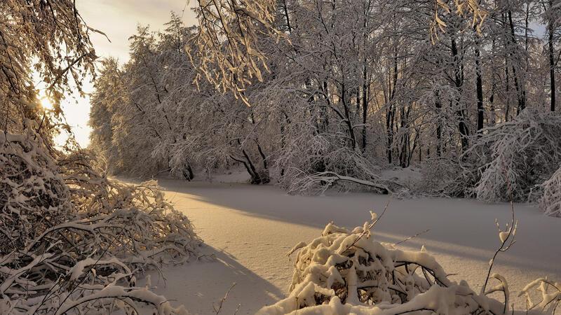 The best winter wallpaper on your desktop Природа, The best winter wallpaper on your desktop, Desktop Wallpapers, Winter, Forests, Sunset, Sunrise id539268308