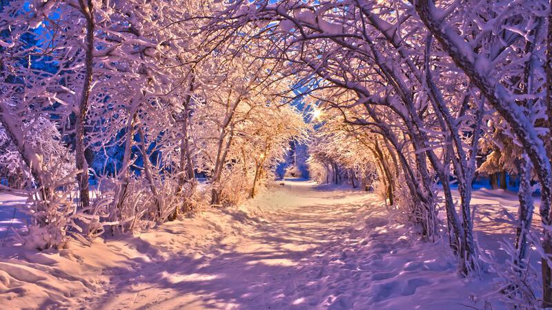 The best winter wallpaper on your desktop / part 2 Природа, The best winter wallpaper on your desktop, Desktop Wallpapers, Winter, Forests, Sunset, Sunrise id1913604821