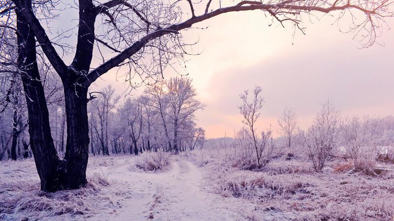 Лучшие фотообои зимы на рабочий стол / часть 2 Природа, Лучшие фотообои зимы на рабочий стол, Обои для рабочего стола, Зима, Леса, Закат солнца, Восход солнца id1388649692