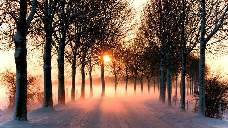Лучшие фотообои зимы на рабочий стол / часть 2 Природа, Лучшие фотообои зимы на рабочий стол, Обои для рабочего стола, Зима, Леса, Закат солнца, Восход солнца id338405825