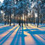 Кращі фотошпалери зими на робочий стіл Природа, Кращі фотошпалери зими на робочий стіл, Шпалери для робочого столу, Зима, Ліси, Захід Сонця, Схід Сонця id1615403613