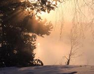 Кращі фотошпалери зими на робочий стіл / частина 2 Природа, Кращі фотошпалери зими на робочий стіл, Шпалери для робочого столу, Зима, Ліси, Захід Сонця, Схід Сонця id46299019