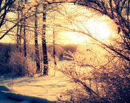 Лучшие фотообои зимы на рабочий стол / часть 2 Природа, Лучшие фотообои зимы на рабочий стол, Обои для рабочего стола, Зима, Леса, Закат солнца, Восход солнца id556668761
