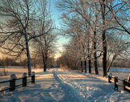 Photo wallpapers of beautiful and mysterious Winter Forests Nature, Winter, Forest, Sunset, Sunrise id633087992