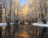 Photo wallpapers of beautiful and mysterious Winter Forests Nature, Winter, Forest, Sunset, Sunrise id108147866